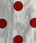 Dots Japan