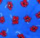 Flores azul